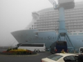 Quantum of the Seas im Nebel 1