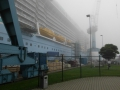 Quantum of the Seas im Nebel 2